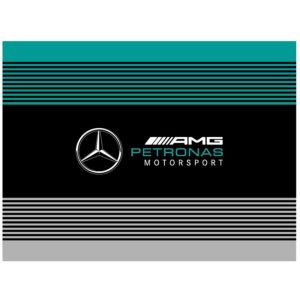 Steag Mercedes AMG F1™ Team 2020